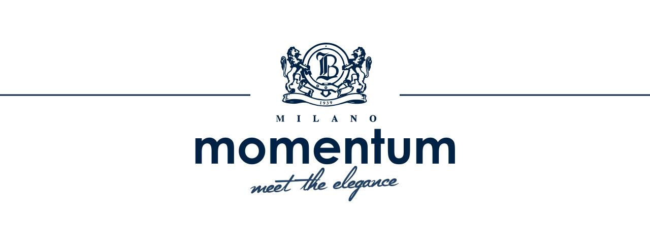 MOMENTUM_INTRO